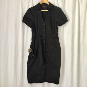 The Limited Button Down Dress